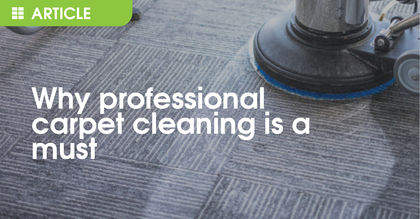 Why professional carpet cleaning is a must